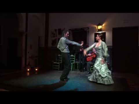 La Casa del Flamenco - Sevilla