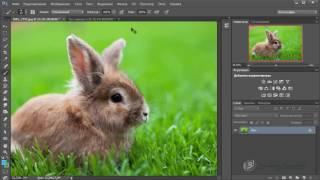 Photoshop CC с нуля(1 часть)