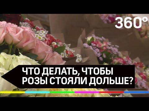 Что делать, чтобы розы стояли дольше?