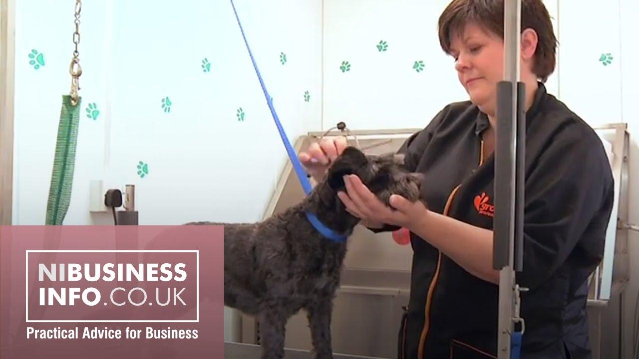 Little Grooming Pet Studio Video