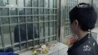 【订阅频道】 Subscribe : http://goo.gl/Mzp80t 【本集看点】 警察赵鹏...