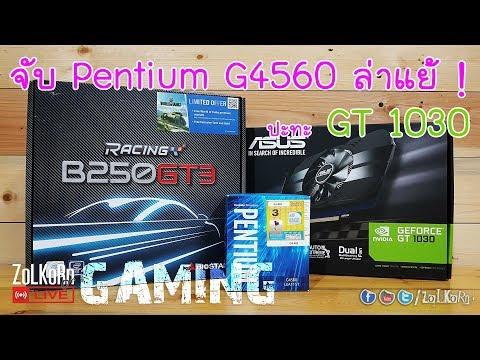จับ Intel Pentium G4560 ควงคู่ GT 1030 ออกล่าแย้ : ZoLKoRn on Live #187