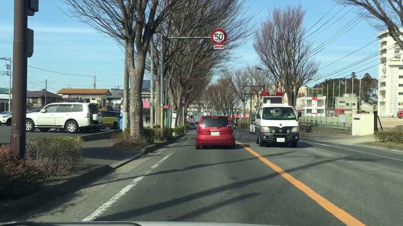 中央 学校 松戸 自動車