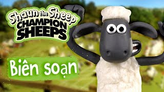 Biên soạn tập đầy đủ 8-14 | Championsheeps | Những Chú Cừu Thông Minh [Shaun the Sheep]