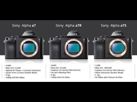 Who Should NOT BUY the Sony Alpha A7R III and WHY ( A7RIII / A7R3 .
