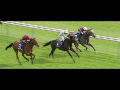 Horse Racing ON GBI