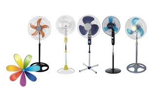 видео Как выбрать вентилятор