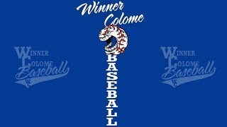 Winner/Colome Royals vs Gregory (Legion Baseball)