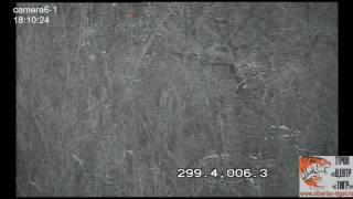 Первое видео в ПРОО