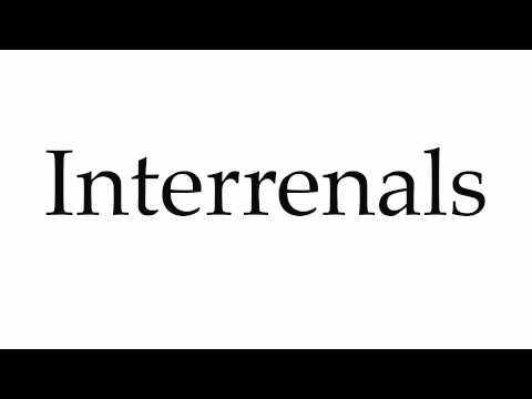 How to Pronounce Interrenals