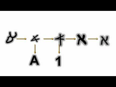 Lecture #10: Ancient Hebrew Alphabet - Aleph
