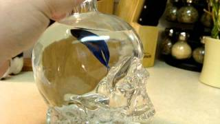 Crystal Head Vodka Betta FISH TANK