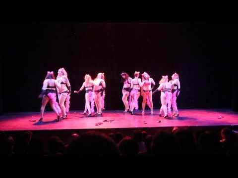 Femme Diagrams-Lunacy Cabaret 2017- Act 2