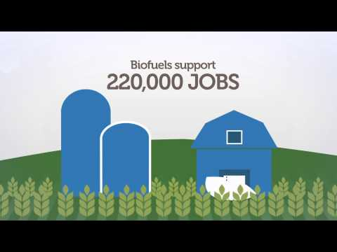 The truth about European biofuels   |   www.europeanbiofuels.eu