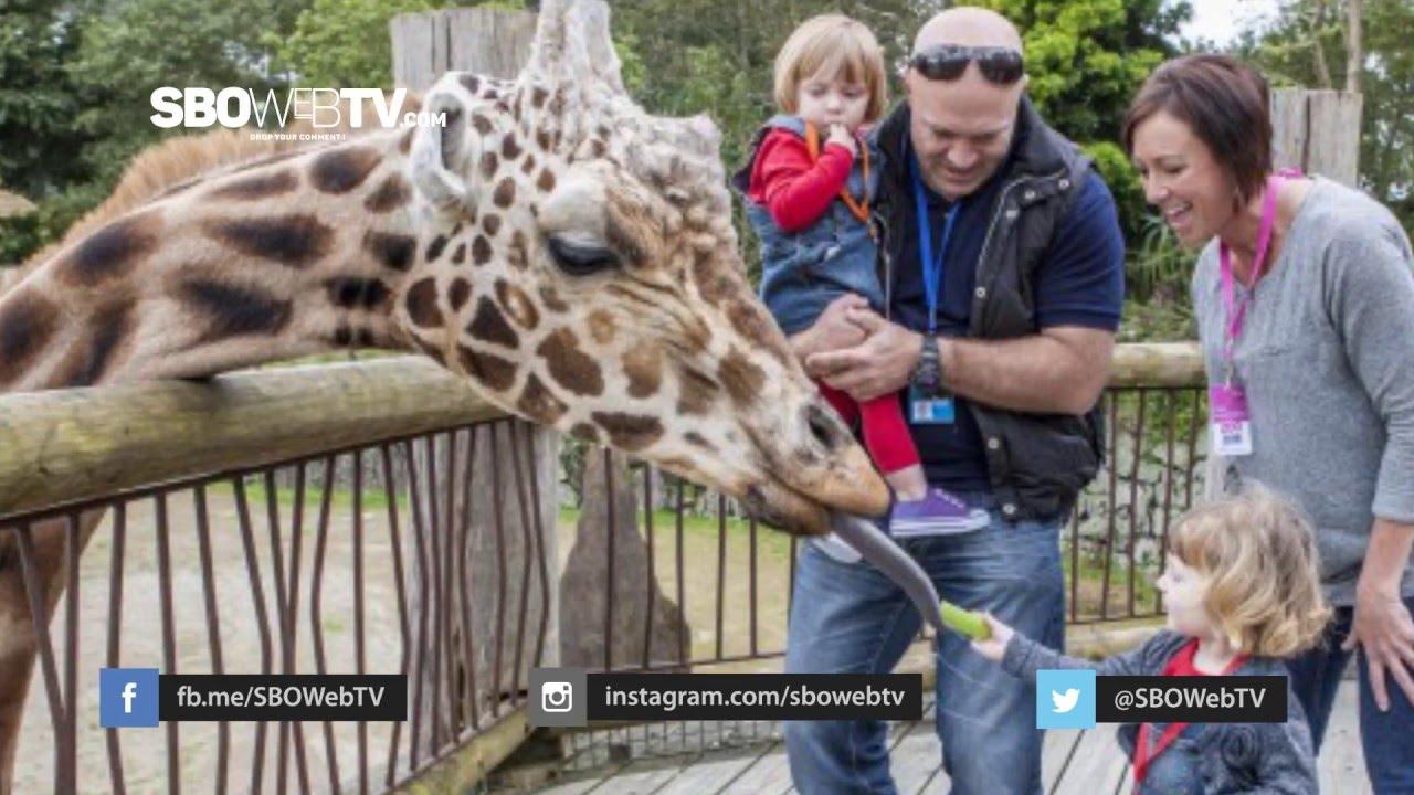 Lima Kesalahan Saat Liburan ke Kebun Binatang