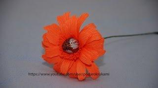 Цветы гербера из конфет и бумаги. Gerbera from sweet and paper(Урок как сделать цветы