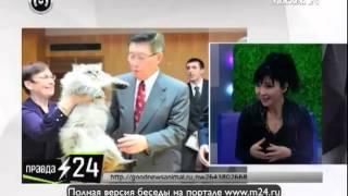 Путин подарил Японии кошку