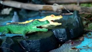ОХОТНИКИ НА ДИНОЗАВРОВ И АКУЛ. ВЕСЕЛЫЕ МУЛЬТФИЛЬМЫ! Старые мультики о динозаврах