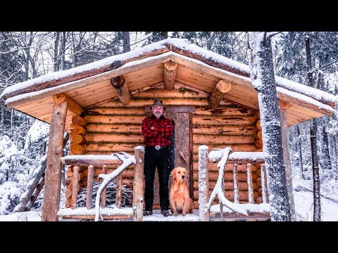 Building a Sauna Cabin with Logs in the Wilderness Alone with My Dog   Start to Finish