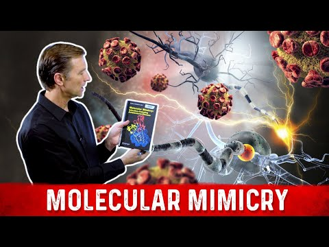 Autoimmune Conditions May Be Viral: Molecular Mimicry