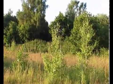 landscaping at lyme/wood pit landfill - haydock, st helens