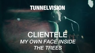 Watch Clientele My Own Face Inside The Trees video