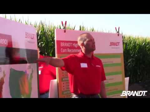 BRANDT Agronomy Update: High-Yield Corn Demonstration