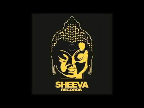 PhunkBomb & Reflex - Put the DIVA on the Record