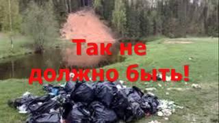 Фильм Берегите насекомых