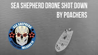 SEA SHEPHERD NIGHT DRONE SHOT DOWN BY POACHERS