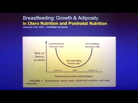Stress Obesity and Pregnancy: Panel