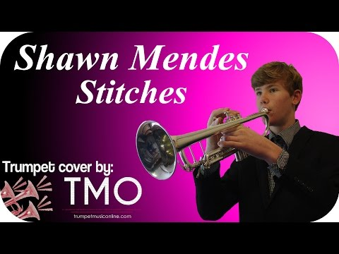 Shawn Mendes - Stitches (TMO Cover)