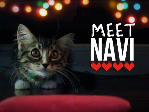 link and navi meet ruby