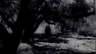 American Horror Story stream 2