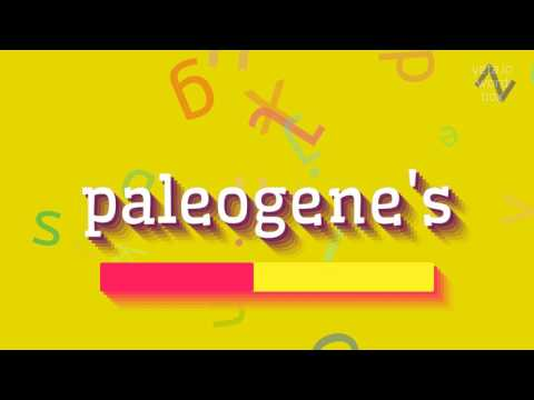 "How to say ""paleogene"