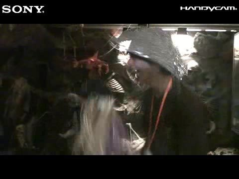 Sony X Ocean Park Halloween 2008 (06/10 07:16PM)