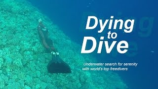 Dying to Dive. Underwater Search for Serenity with World