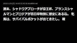 ジャングルポケット産駒応援スレ Part35【2ch】