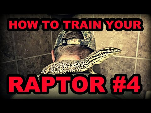 How To Train Your Raptor: Part 4