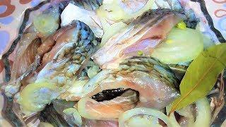 САЛАМУР из карася. Рецепт как правильно СОЛИТЬ и МАРИНОВАТЬ рыбу.