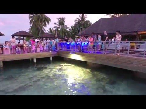 Centara Grand Maldives Holidays