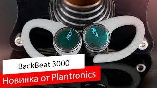 plantronics BackBeat FIT 3100  - Обзор спортивных TWS наушников
