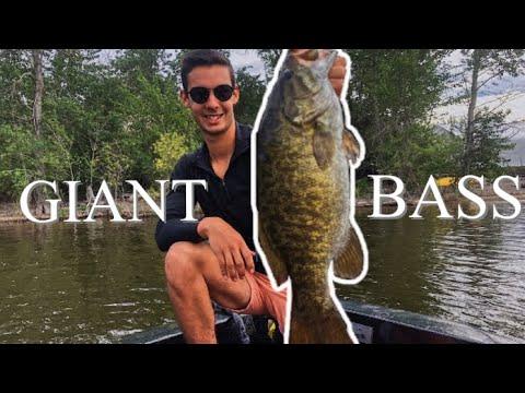 BC Bass Fishing | Large/Small Mouth