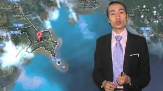 Bản tin Ném đá cuối năm 2012 - Toan Shinoda