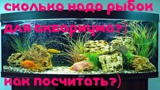 Аквариумные рыбки! Как узнать нужное количество для аквариума? [#Аквариумные рыбки](Аквариумные рыбки! Как узнать нужное количество для аквариума Аквариумные рыбки для начинающих! Сколько..., 2015-11-14T16:21:35.000Z)