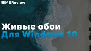 Живые Обои Сталкер Для Windows 10