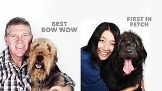 Retrievers Labrador | Breed Judging 2021