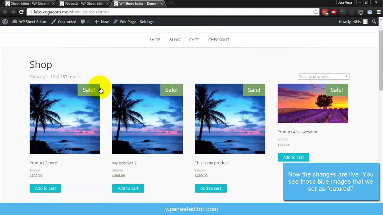 Introducing Wp Sheet Editor Edit Wordpress Posts Pages And Products Easily Youtube