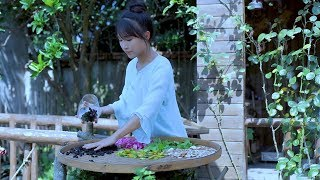 How to make a Chinese herbal tea? 逍遥草本茶,泡一杯自在逍遥!|Liziqi channel