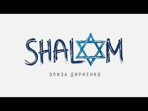 Элиза Дириенко - Шалом | караоке текст | Lyrics